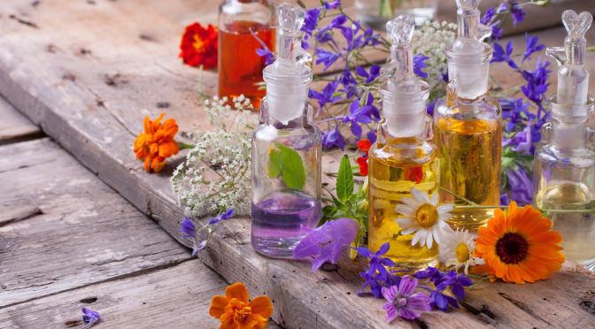 Woran Erkenne Ich Tierversuchsfreie Parfums Ratgeber Rund Um Das