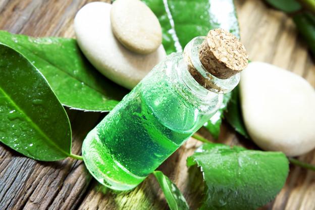Was bewirkt Teebaumöl im Shampoo